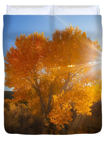 Autumn Golden Birch Tree In The Sun Fine Art Photograph Print Duvet Cover by Jerry Cowart