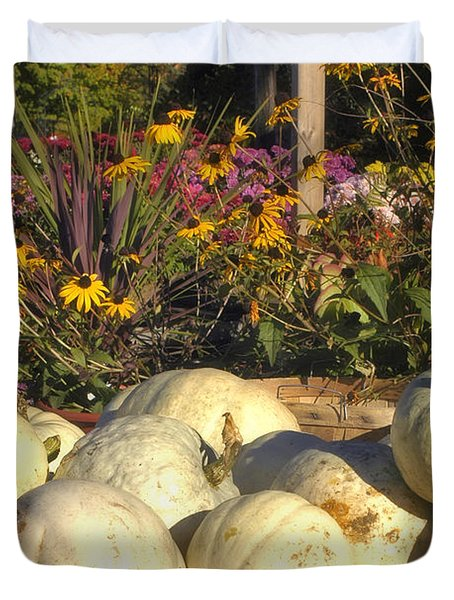 Autumn Gourds Duvet Cover by Joann Vitali