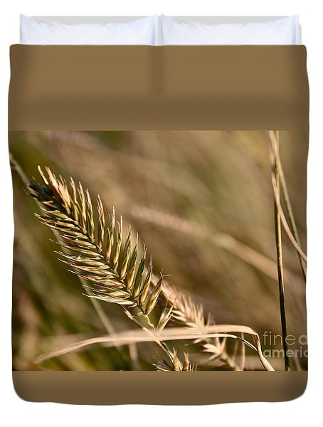 Autumn Grasses Duvet Cover by Linda Bianic