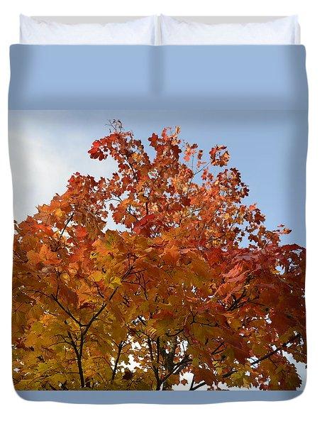 Autumn Harmony 1 Duvet Cover