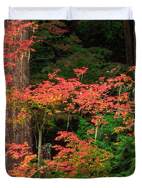 Autumn In Mount Rainier Forest Duvet Cover