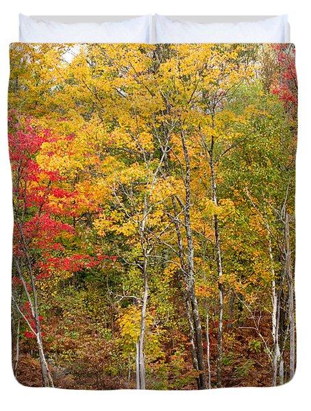 Autumn In Muskoka Duvet Cover