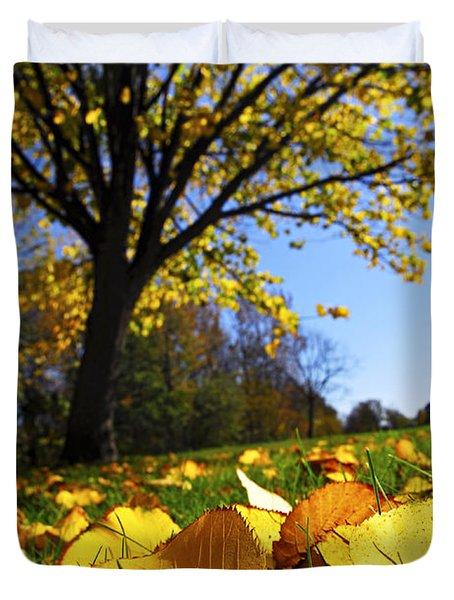 Autumn Landscape Duvet Cover by Elena Elisseeva