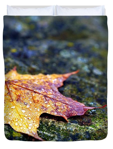 Autumn Leaf On Rocky Ledge Duvet Cover by Terri Gostola
