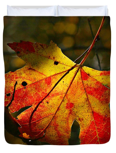 Autumn Maple Leaf Duvet Cover by Richard Engelbrecht