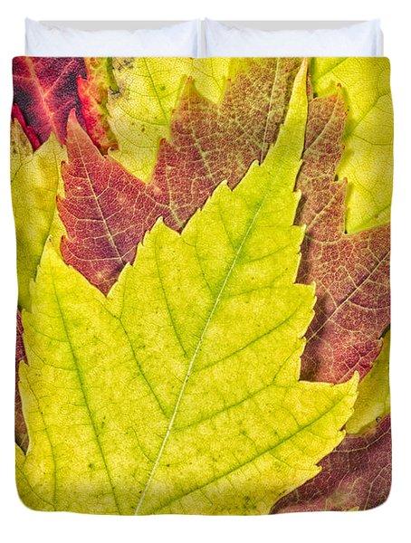 Autumn Maple Leaves Duvet Cover by Adam Romanowicz