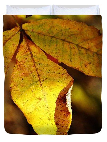 Autumn Moon Duvet Cover by JAMART Photography