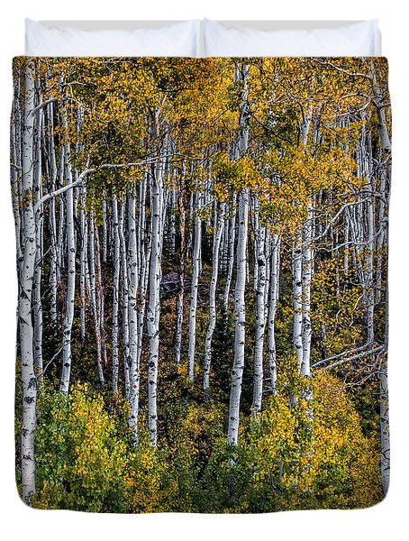 Duvet Cover featuring the photograph Autumn On Mcclure Pass by Ken Smith