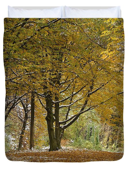 autumn on Moenchsberg in Salzburg Duvet Cover by Rudi Prott