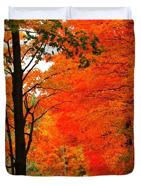 Autumn Orange 2 Duvet Cover by Terri Gostola