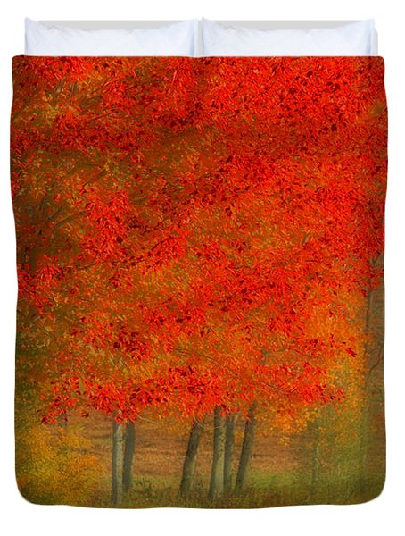 Autumn Popping Duvet Cover by Karol Livote