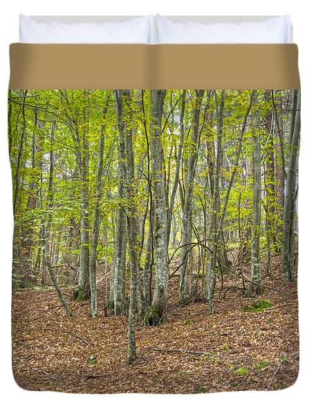 Duvet Cover featuring the photograph Autumn by Raffaella Lunelli