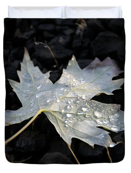 Duvet Cover featuring the photograph Autumn Rain by Katie Wing Vigil