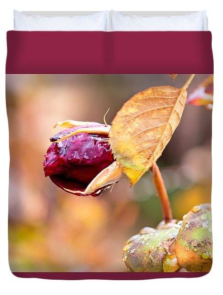Duvet Cover featuring the photograph Autumn Rosebud by Rona Black