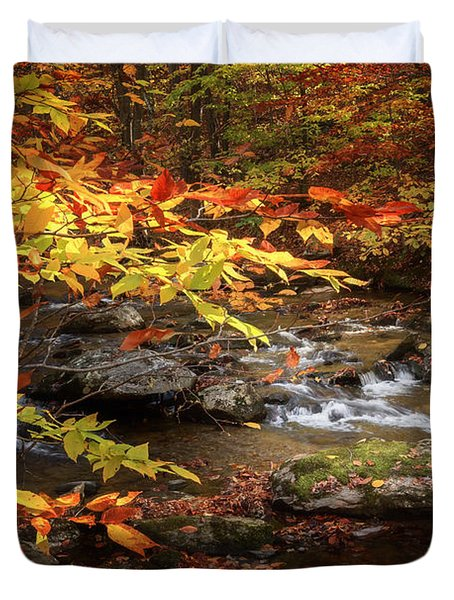Autumn Stream Duvet Cover by Bill Wakeley