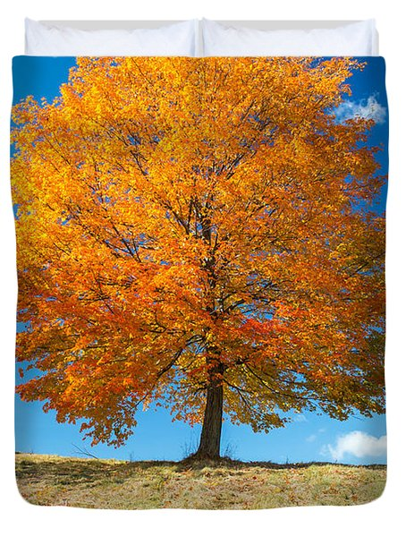 Autumn Tree - 1 Duvet Cover