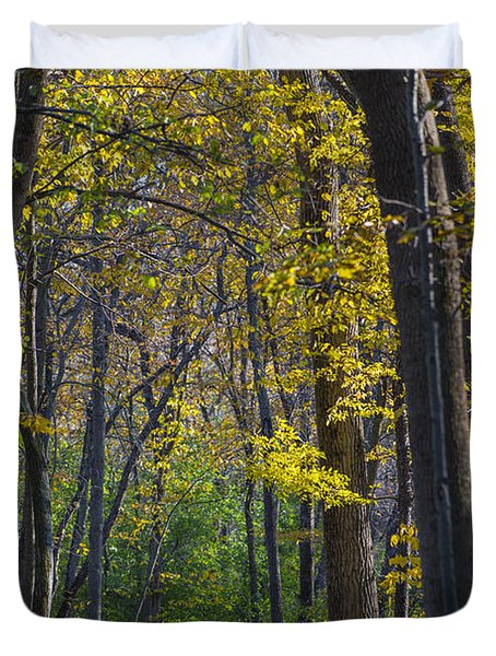 Duvet Cover featuring the photograph Autumn Trees Alley by Sebastian Musial
