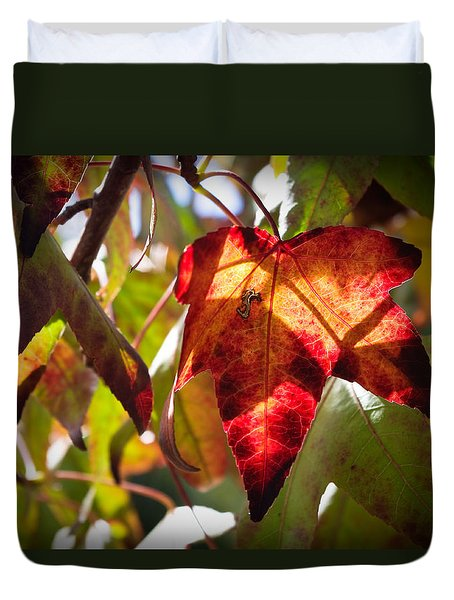 Duvet Cover featuring the photograph Autumn Warmth by Adria Trail
