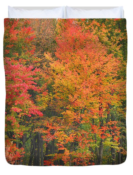 Autumn Woods Duvet Cover by Mary Carol Story