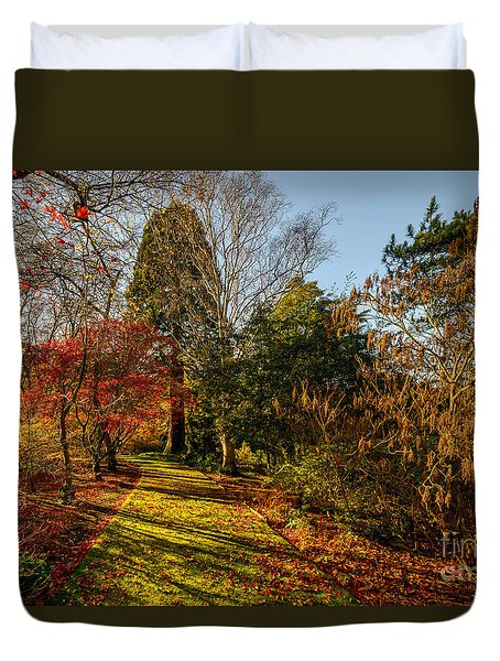 Autumnal Forest Duvet Cover by Adrian Evans