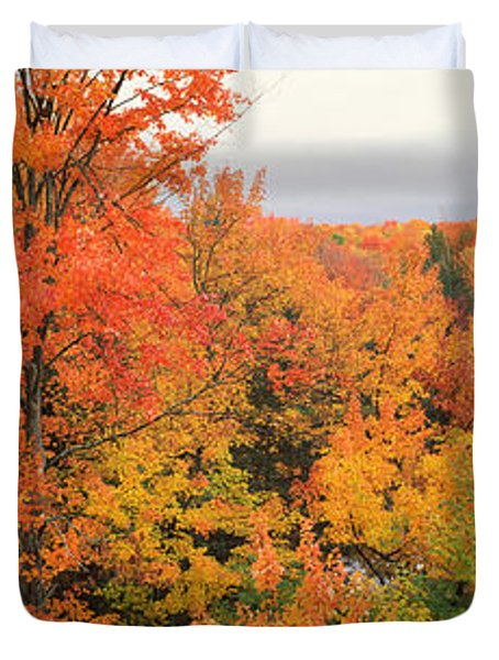 Autumnal Trees In A Forest, Hiawatha Duvet Cover