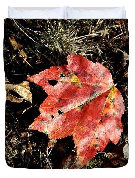 Autumns End Duvet Cover by JAMART Photography
