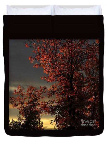 Autumn's First Light Duvet Cover by James Eddy