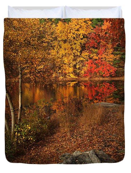 Autumns Path Duvet Cover by Karol Livote