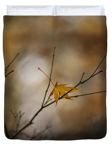 Autumns Solitude Duvet Cover by Mike Reid