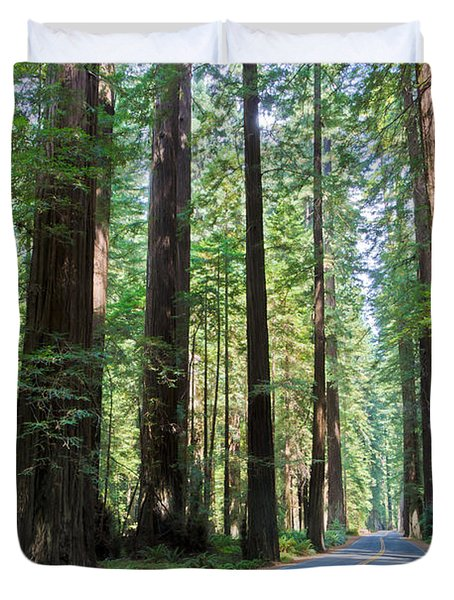 Avenue Of The Giants Duvet Cover by Heidi Smith