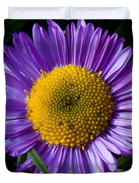 Duvet Cover featuring the photograph Awesome Daisy by Steven Reed