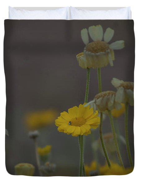 Duvet Cover featuring the photograph Az Flowers by Rod Wiens