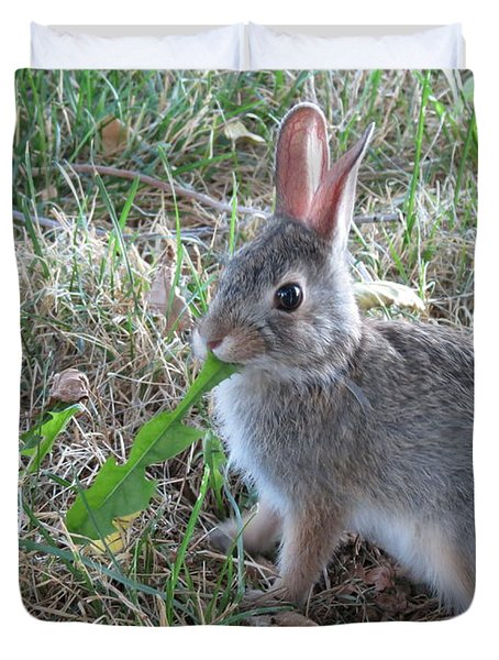 Baby Bunny Eating Dandelion #01 Duvet Cover