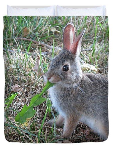 Baby Bunny Eating Dandelion #01 Duvet Cover