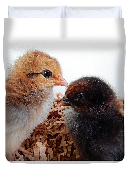 Baby Chicks Duvet Cover by Pamela Walton