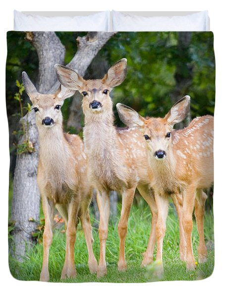 Baby Deer Duvet Cover