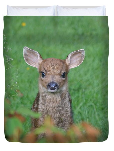 Baby Fawn In Yard Duvet Cover by Kym Backland