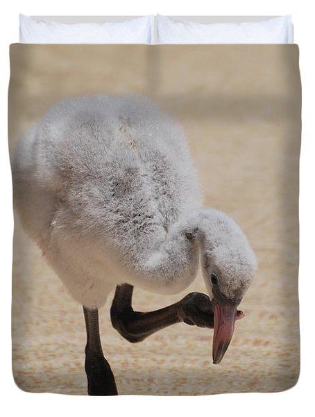 Baby Flamingo Duvet Cover by DejaVu Designs