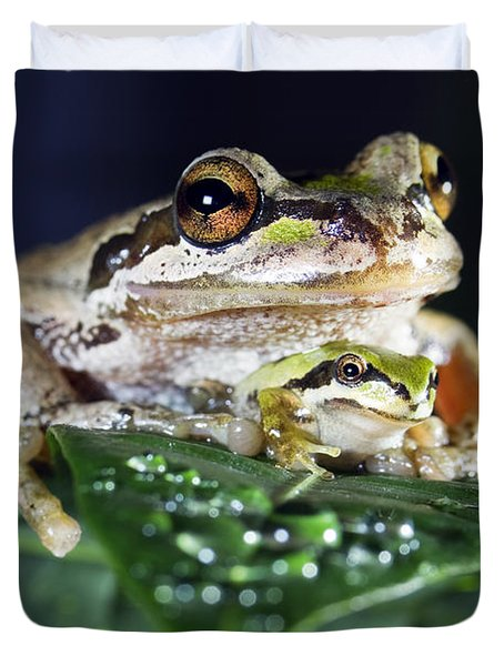 Baby Frog And Mama Frog Duvet Cover