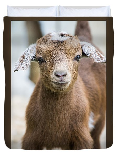 Baby Goat Duvet Cover by Shelby  Young