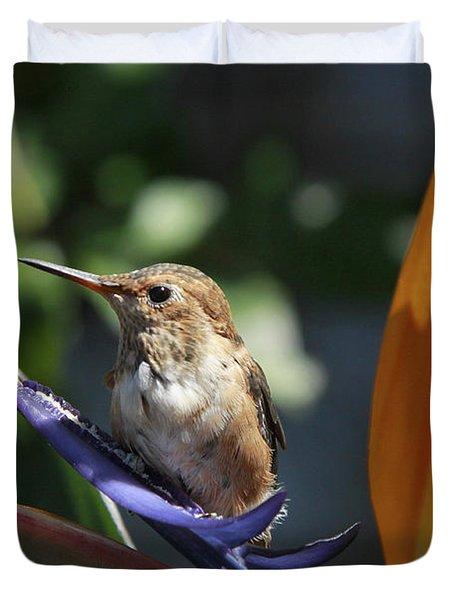 Baby Hummingbird On Flower Duvet Cover