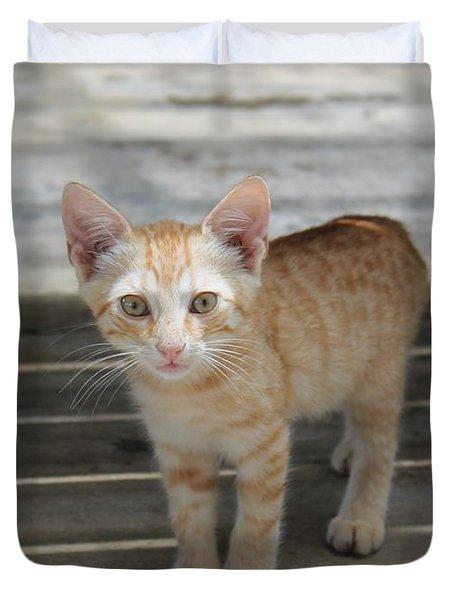 Baby Kitty Duvet Cover