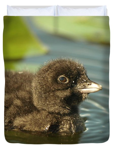 Duvet Cover featuring the photograph Baby Loon by James Peterson