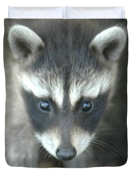 Baby Racoon Duvet Cover