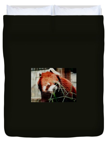 Duvet Cover featuring the photograph Baby Red Panda Bear by Belinda Lee