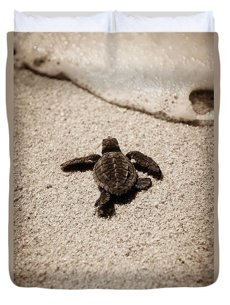 Baby Sea Turtle Duvet Cover by Sebastian Musial