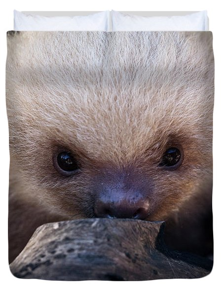 Baby Sloth 2 Duvet Cover by Heiko Koehrer-Wagner