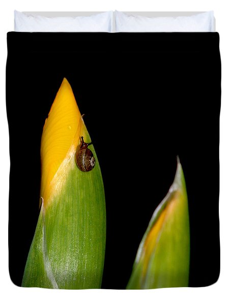 Baby Snail On Yellow Iris Bud Duvet Cover