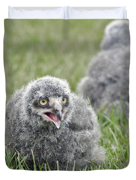 Duvet Cover featuring the photograph Baby Snowy Owls by JT Lewis