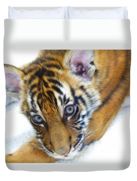 Baby Tiger Duvet Cover by Steve McKinzie